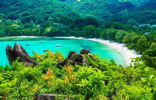 beach on the seychelles - 세이셸 뉴스 사진 이미지