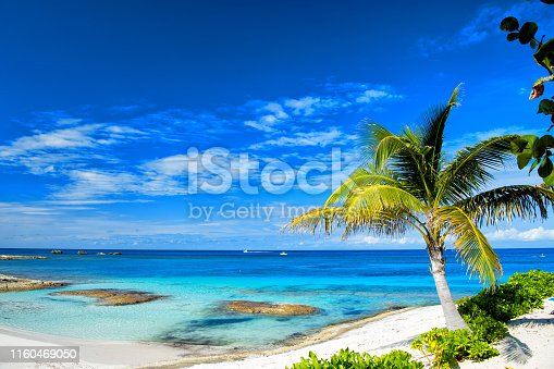 istock beach or coast with white sand 1160469050