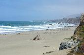 Beach Pacific Ocean Northern California, USA
