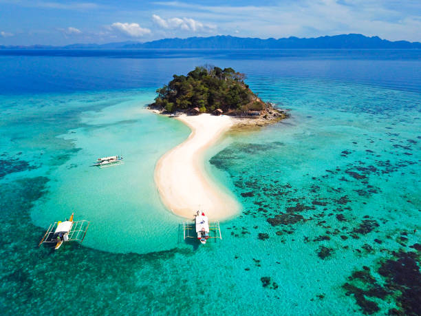 beach palawan philipinnes - philippines stock photos and pictures