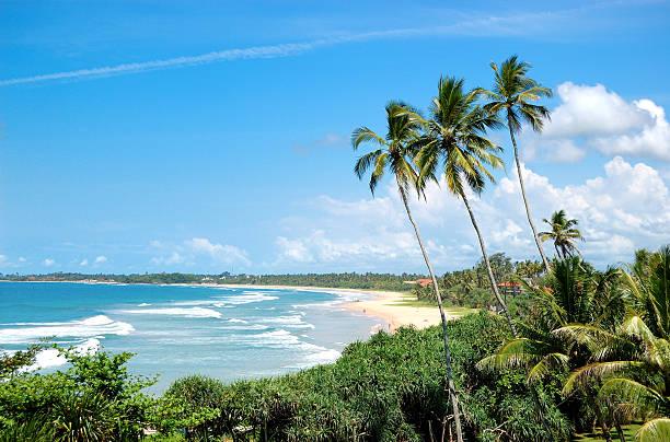 Strand, Palmen und dem türkisfarbenen Wasser des Indischen Ozeans, Sri Lanka – Foto