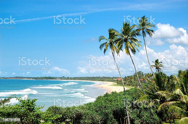 Beach, palms and turquoise water of Indian Ocean, Sri Lanka