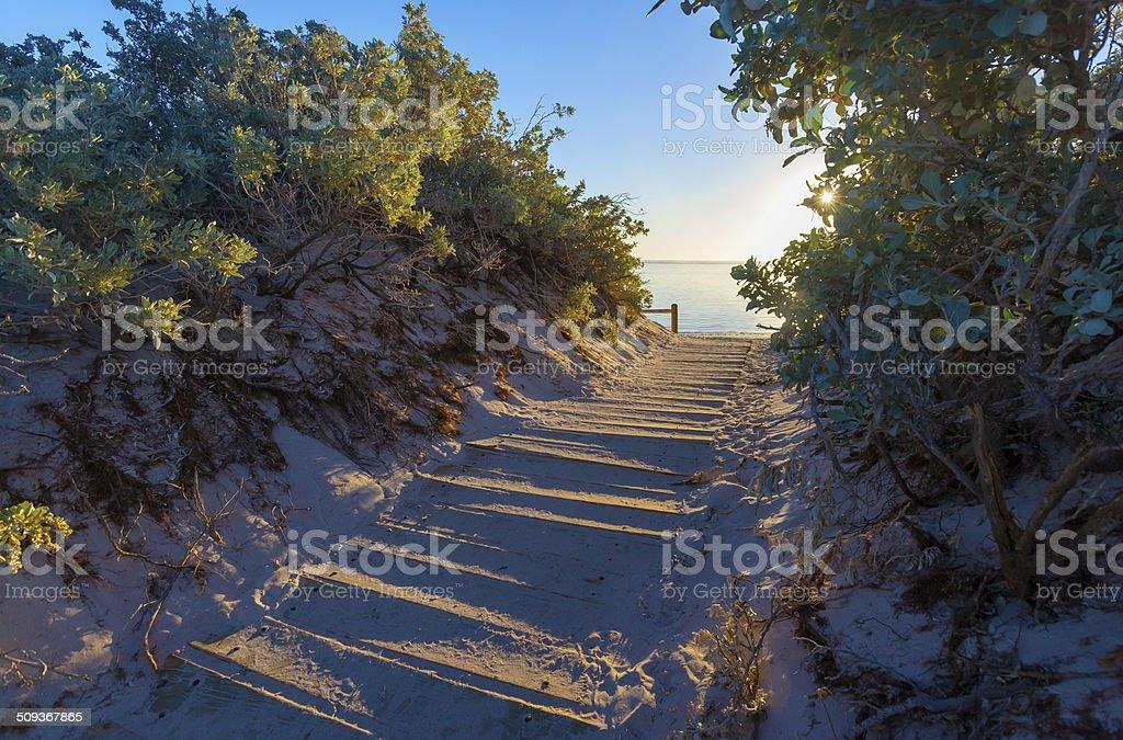 Beach Path Between The Dunes stock photo