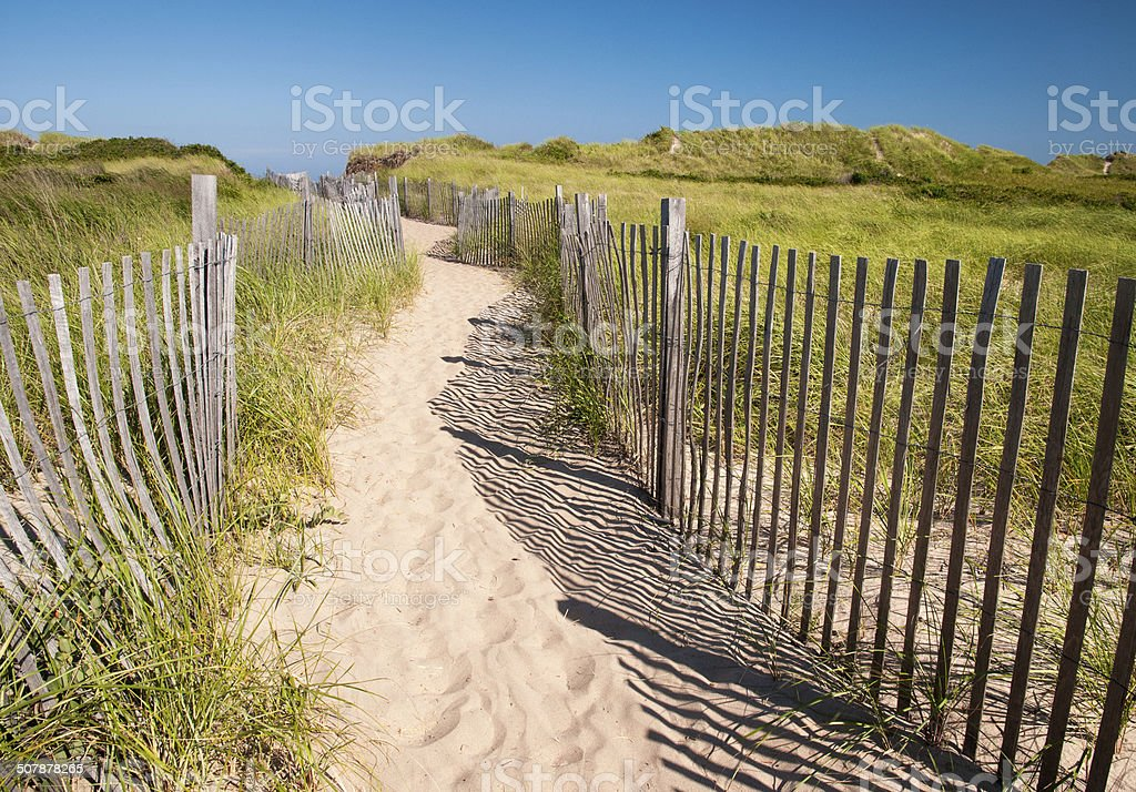 Beach Path stock photo