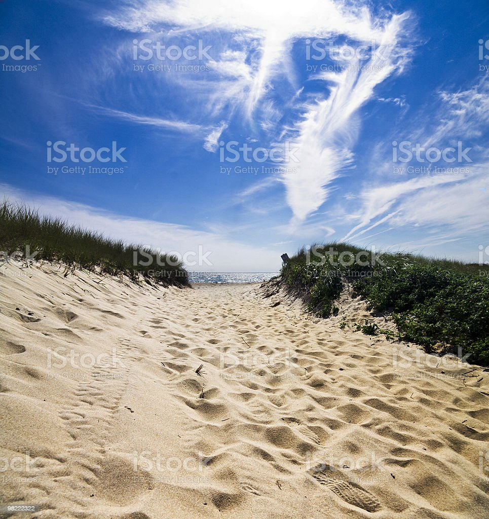 Beach Path royalty-free stock photo