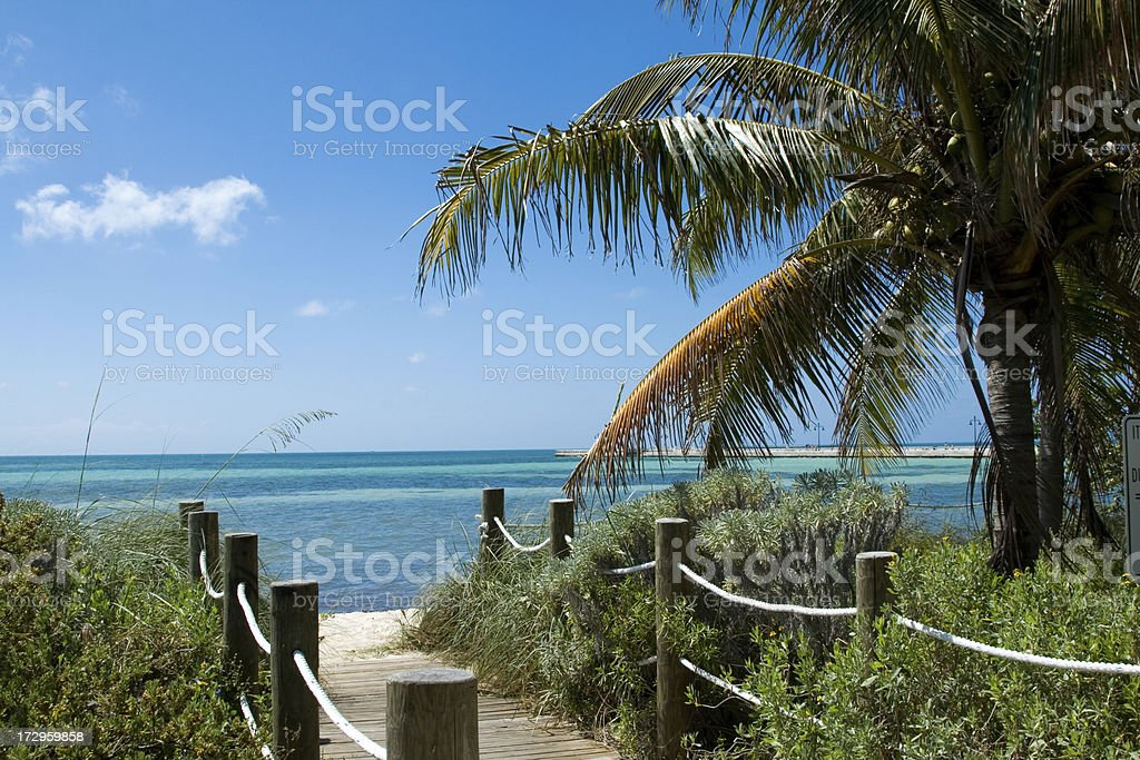 Beach Pathway stock photo