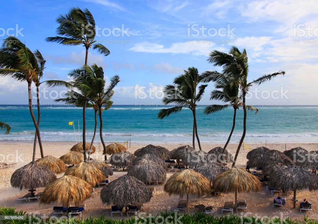 Beach photo with palm trees and blue ocean. Dominican Republic stock photo