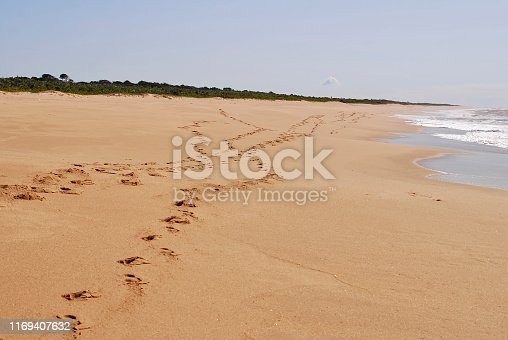 Beach photographed in Guarapari, Espirito Santo. Southeast of Brazil. Atlantic Forest Biome. Picture made in 2007.