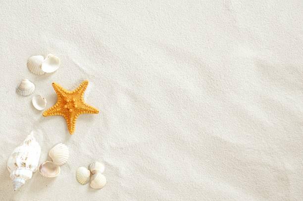 plaża - piasek zdjęcia i obrazy z banku zdjęć