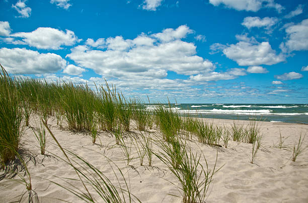 beach - lake michigan strände stock-fotos und bilder