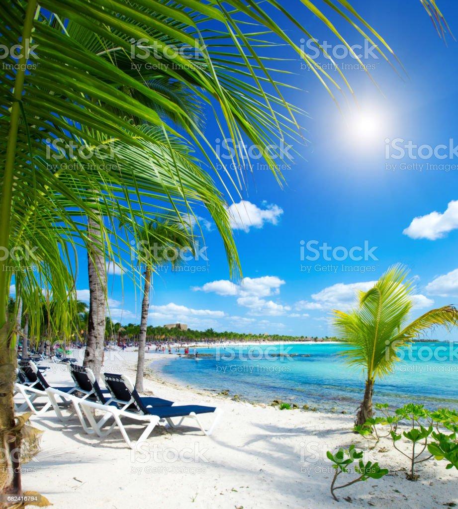 beach photo libre de droits