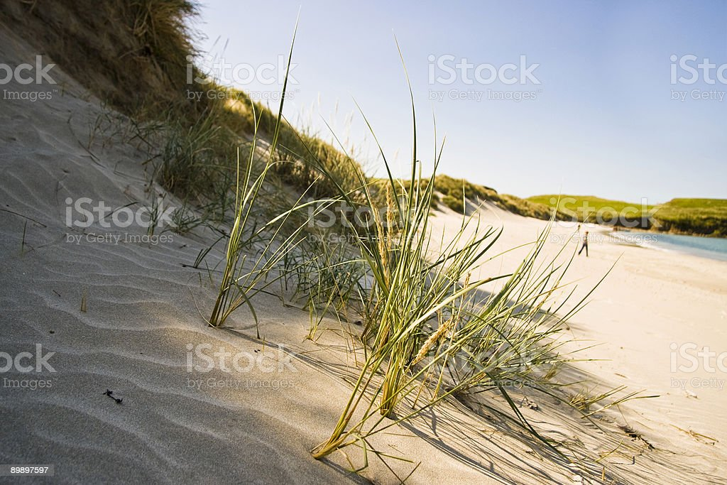 La playa foto de stock libre de derechos