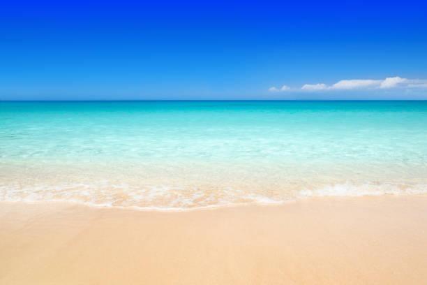 beach - laguna foto e immagini stock