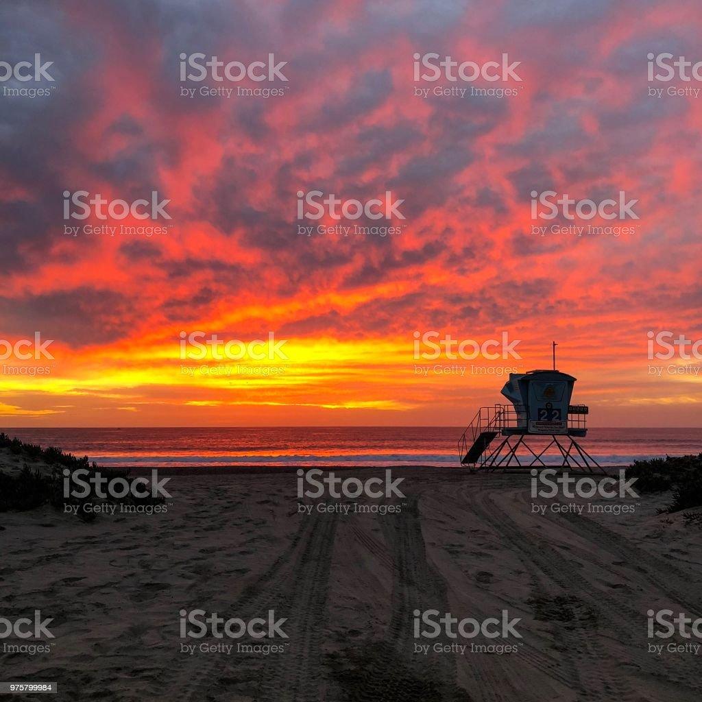 Beach - Lizenzfrei Blume Stock-Foto