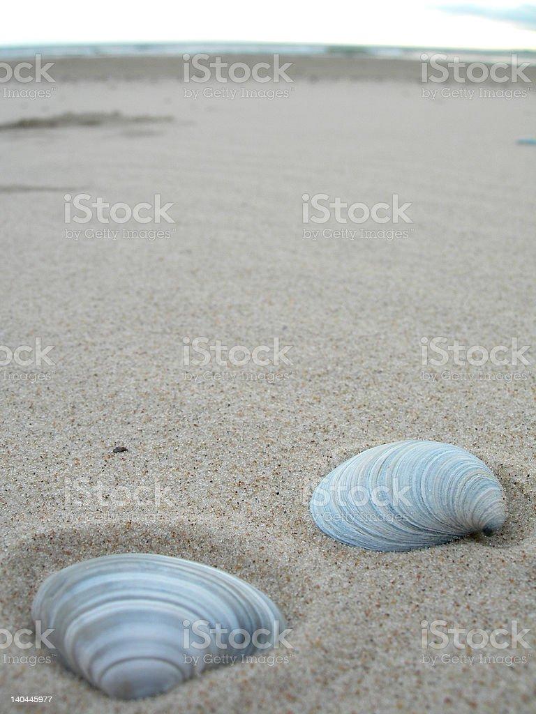 Beach / Playa royalty-free stock photo