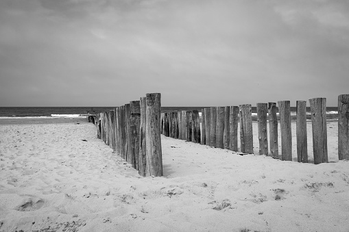 Beach poles wavebreaker in Domburg, the Netherlands