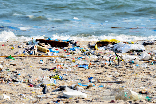 istock Beach pollution. Plastic bottles and other trash on sea beach 672873222