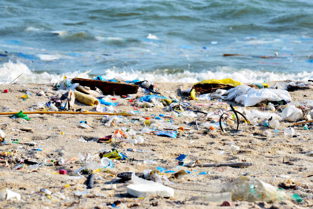 Beach pollution. Plastic bottles and other trash on sea beach - foto stock