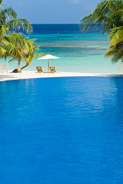 Beach Pool and Caribbean Sea Resort infinity pool overlooks tropical beach, palm trees, and Caribbean Sea. Roatan, Honduras roatan stock pictures, royalty-free photos & images
