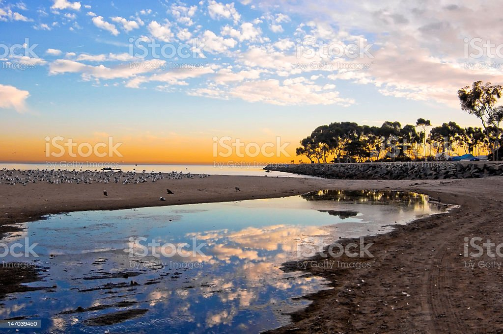 Beach Reflection royalty-free stock photo