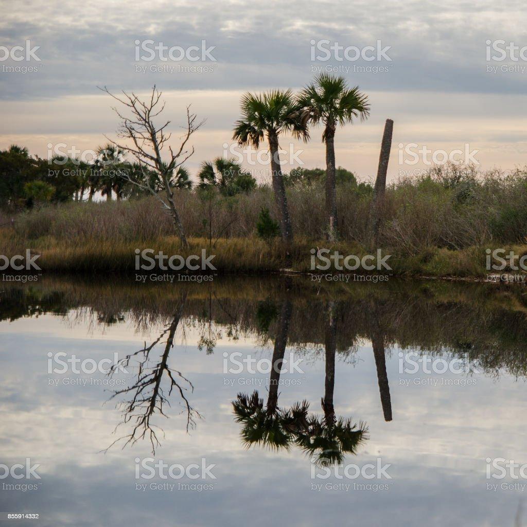 Beach reflection stock photo