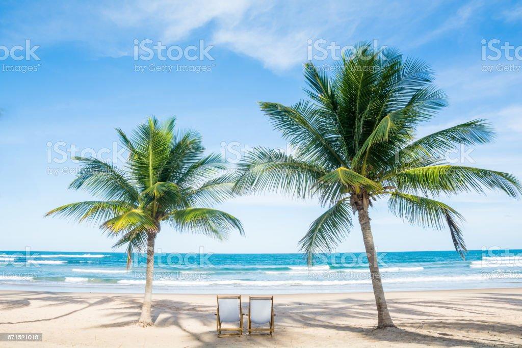 Beach Relax Palm stock photo