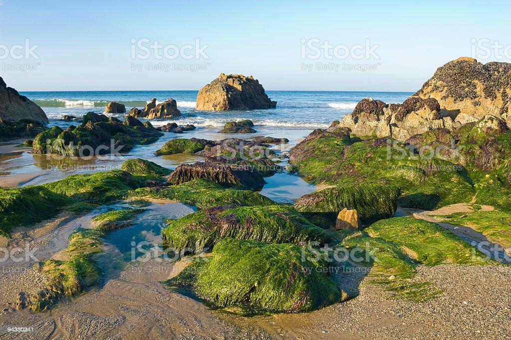 Beach, rocky shore, ocean royalty-free stock photo