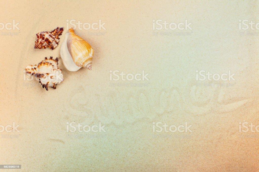 Beach sand and sea shells. Summer or holidays concept Lizenzfreies stock-foto