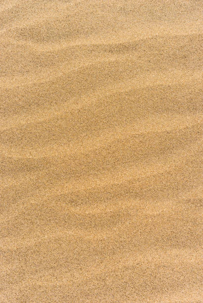 Fond de sable de plage - Photo