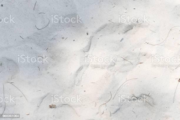 Tło Piasku Plażowego - zdjęcia stockowe i więcej obrazów Abstrakcja