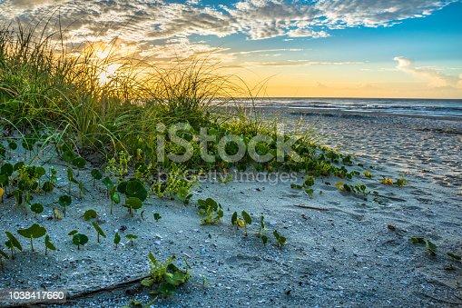 Beautiful sand dunes leading to beach ocean at sunrise.