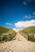 A sandy pathway from the beach to the sand dunes. Copy space on the blue sky.