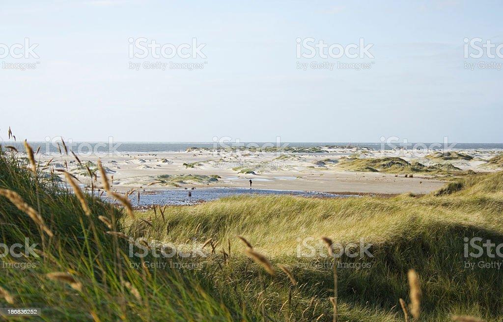 Beach scene on a stormy autumn day. stock photo