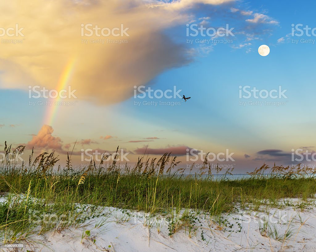 Beach scene on gulf coast in mississippi stock photo