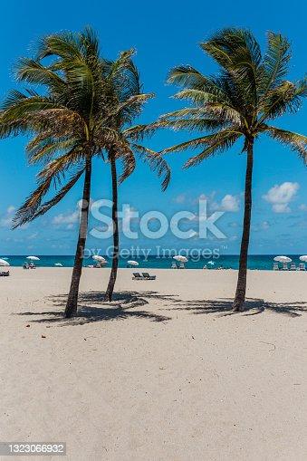 istock Beach scene on Singer Island, Palm Beach County 1323066932