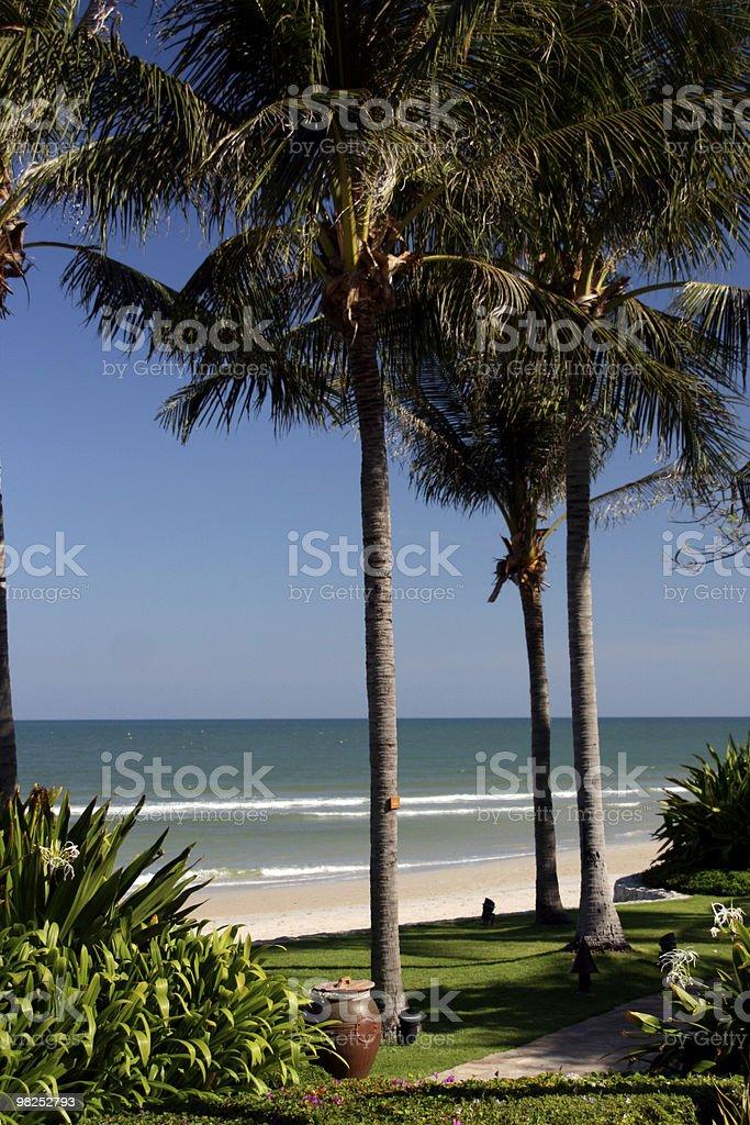 Scena della spiaggia foto stock royalty-free