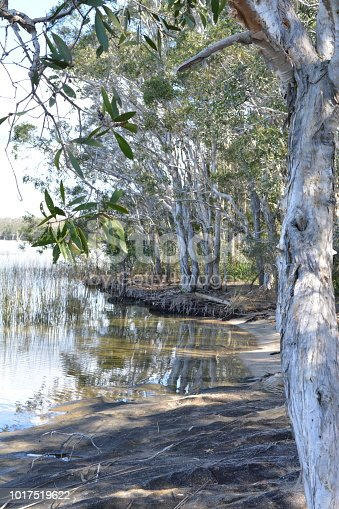 istock Beach scene Pumice-stone Passage, QLD 1017519622