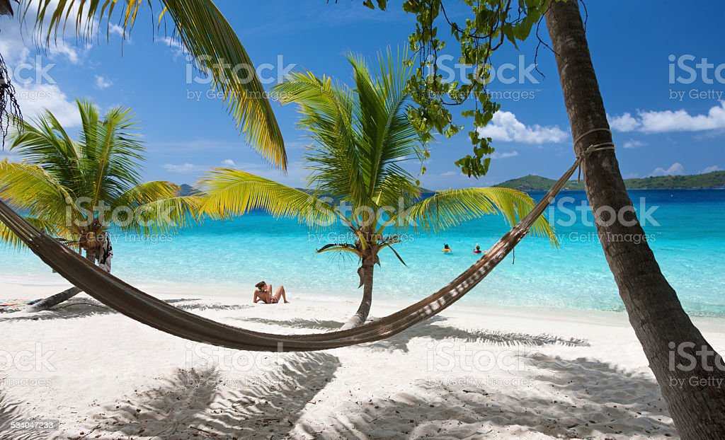 beach scene with a hammock stretched between palm trees stock photo