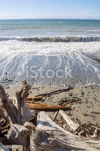 Photo taken at a remote beach in Washington State. The blue sky hits the horizon then you see the waves, bringing the tide in to a sandy beach. In the foreground you can see a pile of driftwood that has washed up from the ocean. Taken on a sunny day, this vertical landscape is peaceful and serene, showing the beauty in nature in this water's edge seascape.