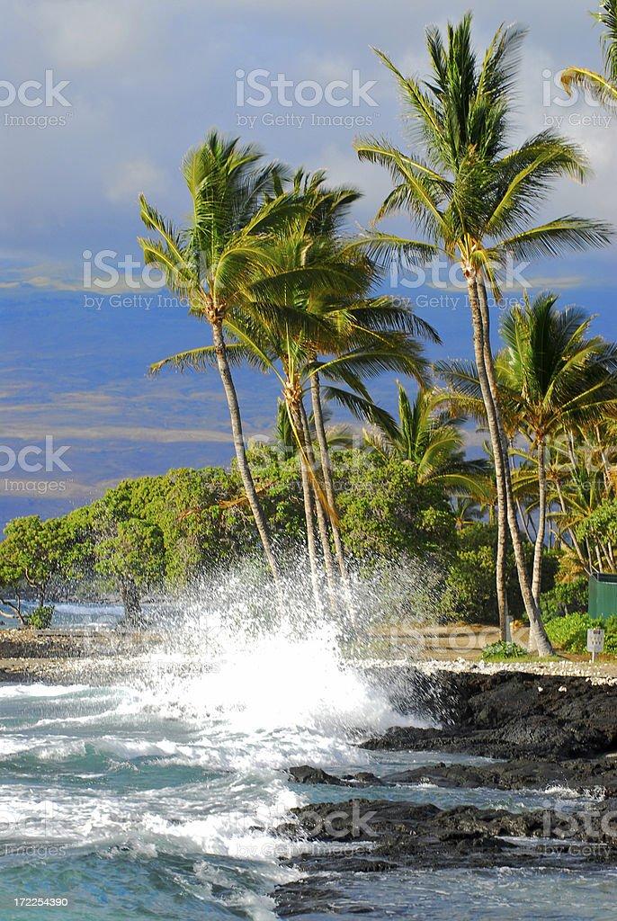 Beach Scenic royalty-free stock photo