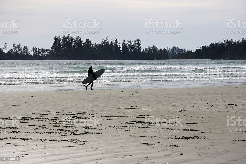 Beach Scenic With Surfer. stock photo