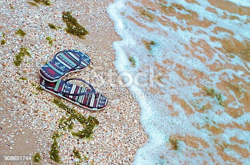 istock beach slippers on the shell seashore, polluted with green algae 908651744