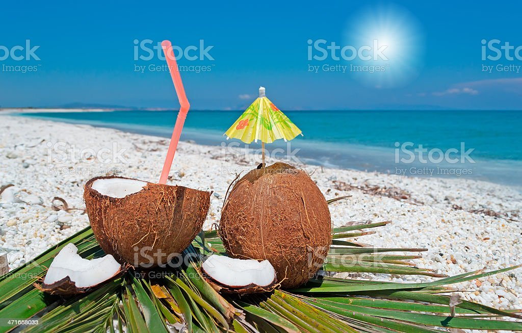 beach, sun and coconuts royalty-free stock photo
