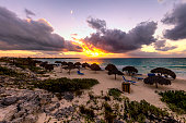 Cayo Largo, Cuba, Latin America, Summer, Tropical Climate,Beach Umbrellas made of palm leafs on exotic beach