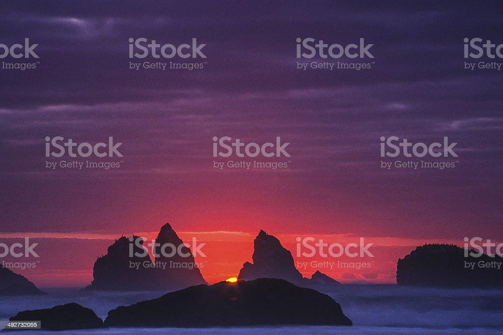 beach sunset nature stock photo