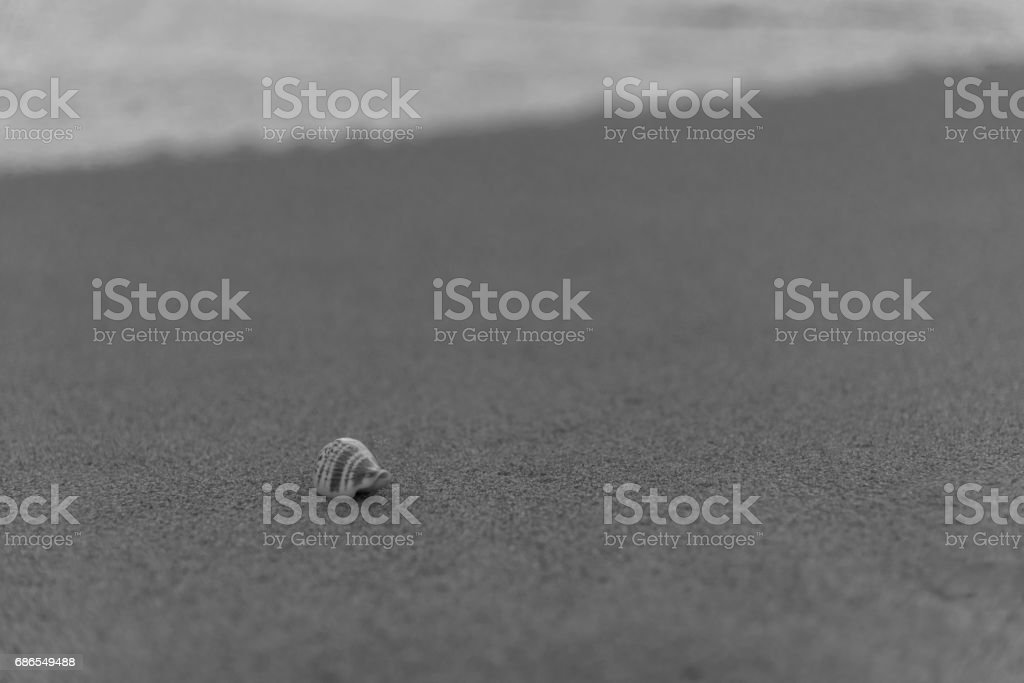 beach sunset royalty free stockfoto