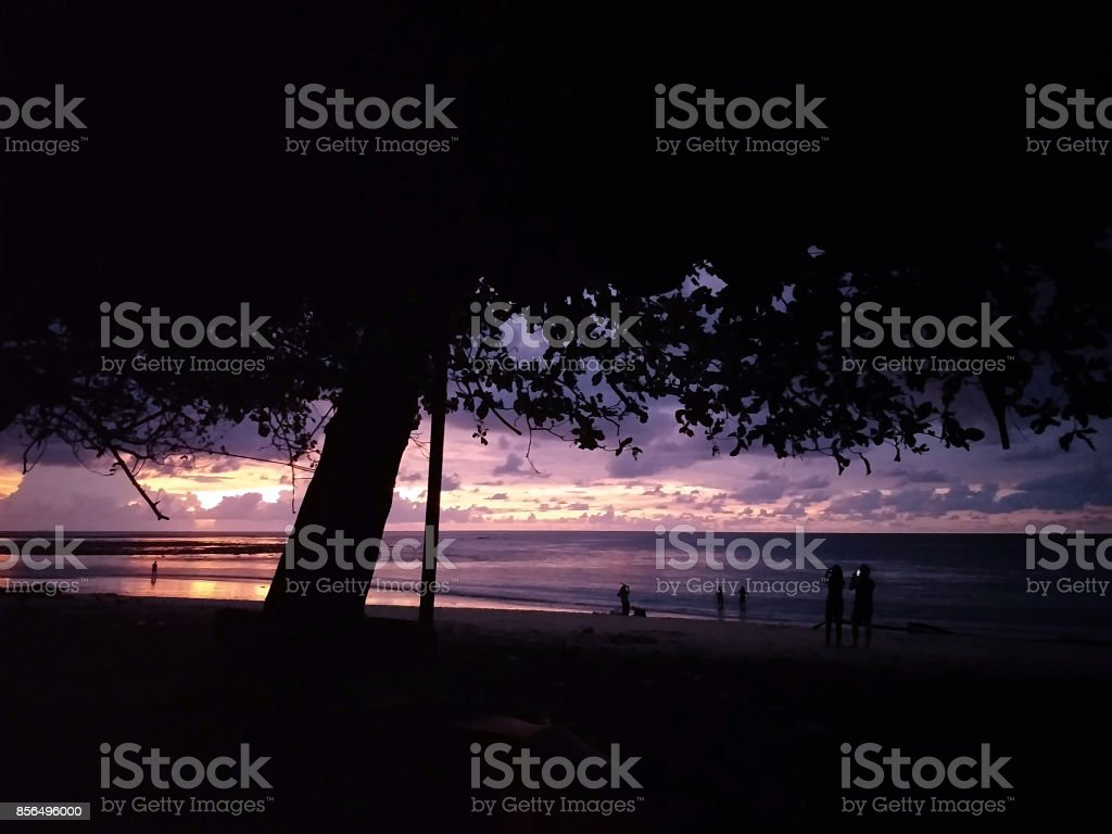 beach sunset with silhouette tree people enjoy activities in lifestyle stock photo