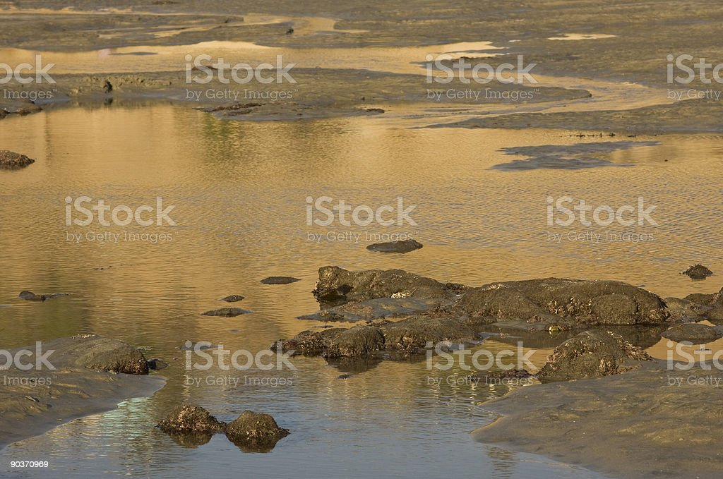Beach Tidepool Abstract, Sunset, Golden Light, S Curve, Reflection, Water royalty-free stock photo