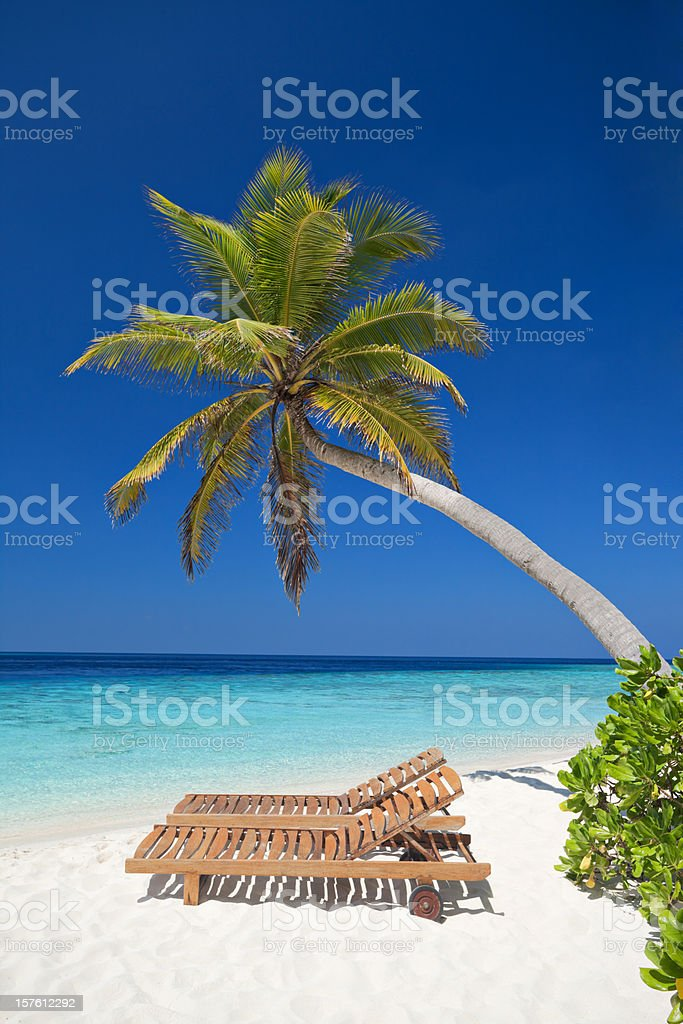 beach to relax under palmtree royalty-free stock photo