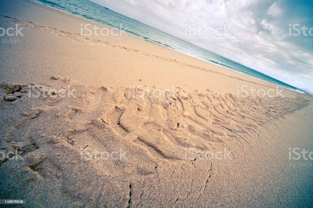Beach tracks 4WD stock photo